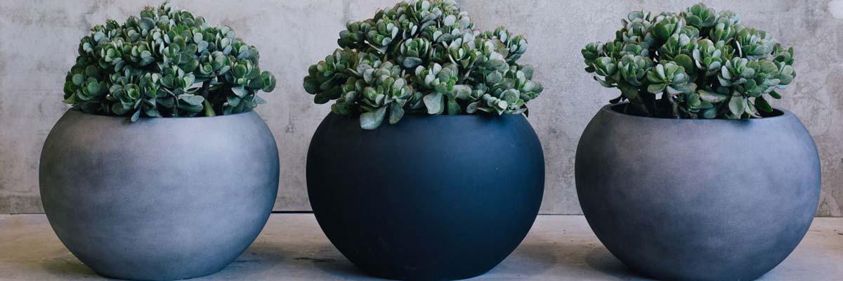 designer-garden-pots